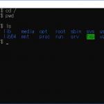 Windows10でWSLを利用してLinuxを利用する(Windows10でのファイル)